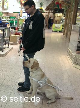 Blindenführhund-weisses führgeschirr
