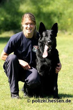 Polizeihunde Hessen Ausbildung verkleinert
