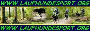 laufhundesport