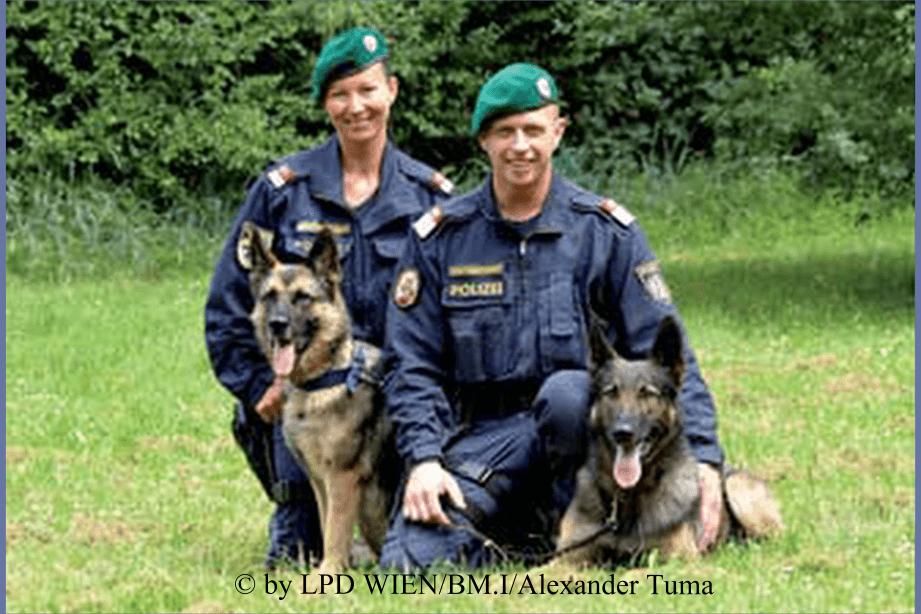 Polizeihunde aus Österreich
