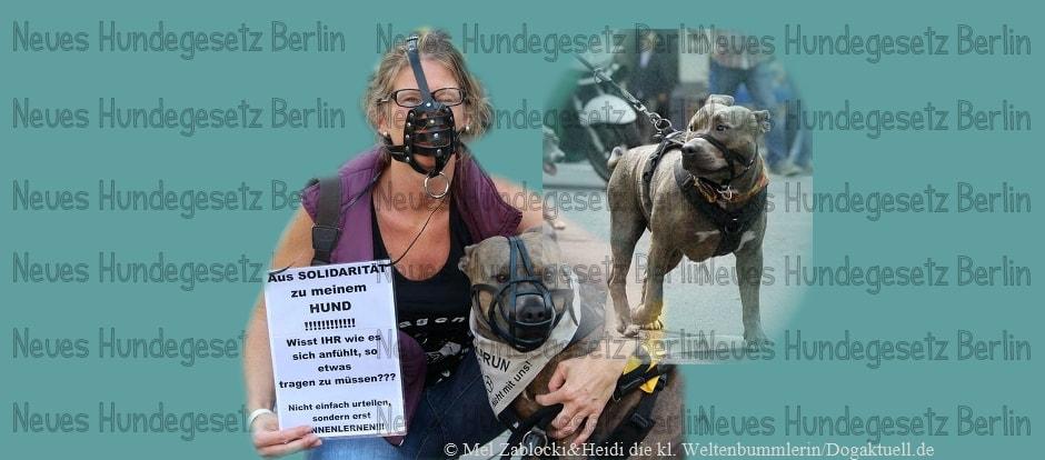Neues Hundegesetz in Berlin