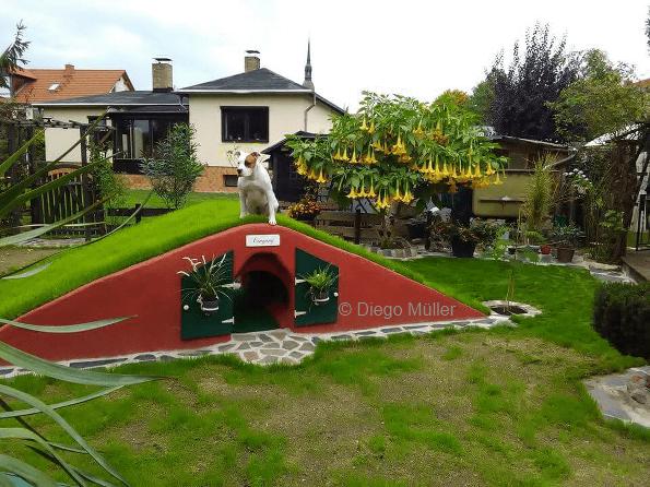 Hundefreundlichen Garten