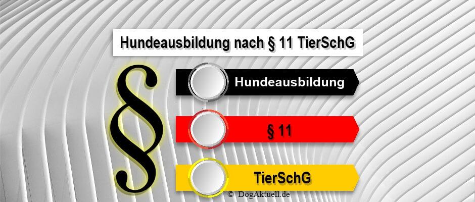 Hundeausbildung-nach-§-11-TierSchG
