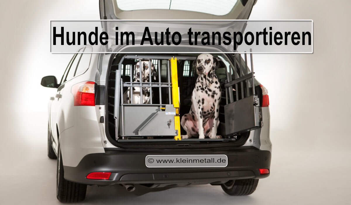 hunde im auto transportieren dog aktuell das hundemagazin. Black Bedroom Furniture Sets. Home Design Ideas