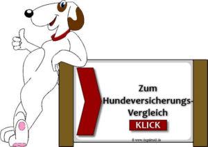Hundeversicherungsvergleich