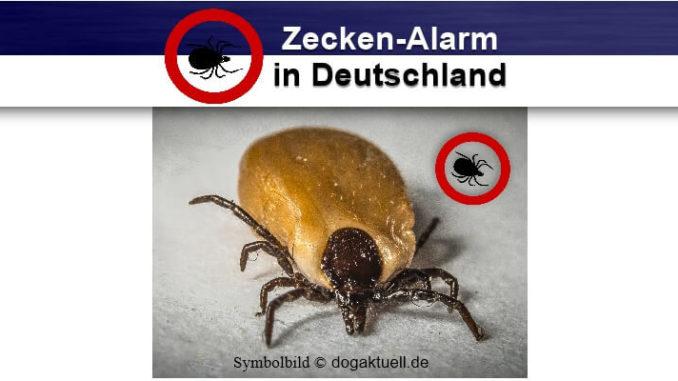 Zecken-Alarm in Deutschland