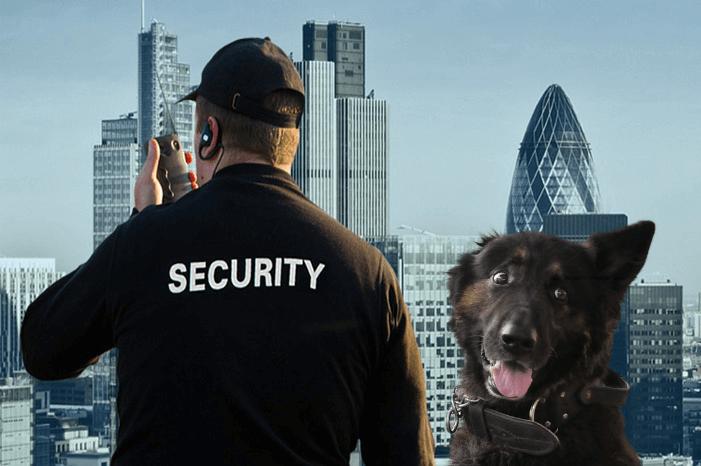 Das Tierschutzgesetz muss leider draußen bleiben